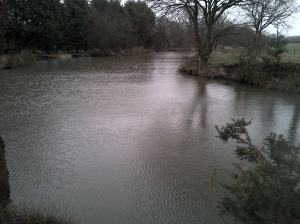 Heskin hall pond 1