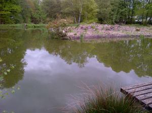 Bradshaws lake 7