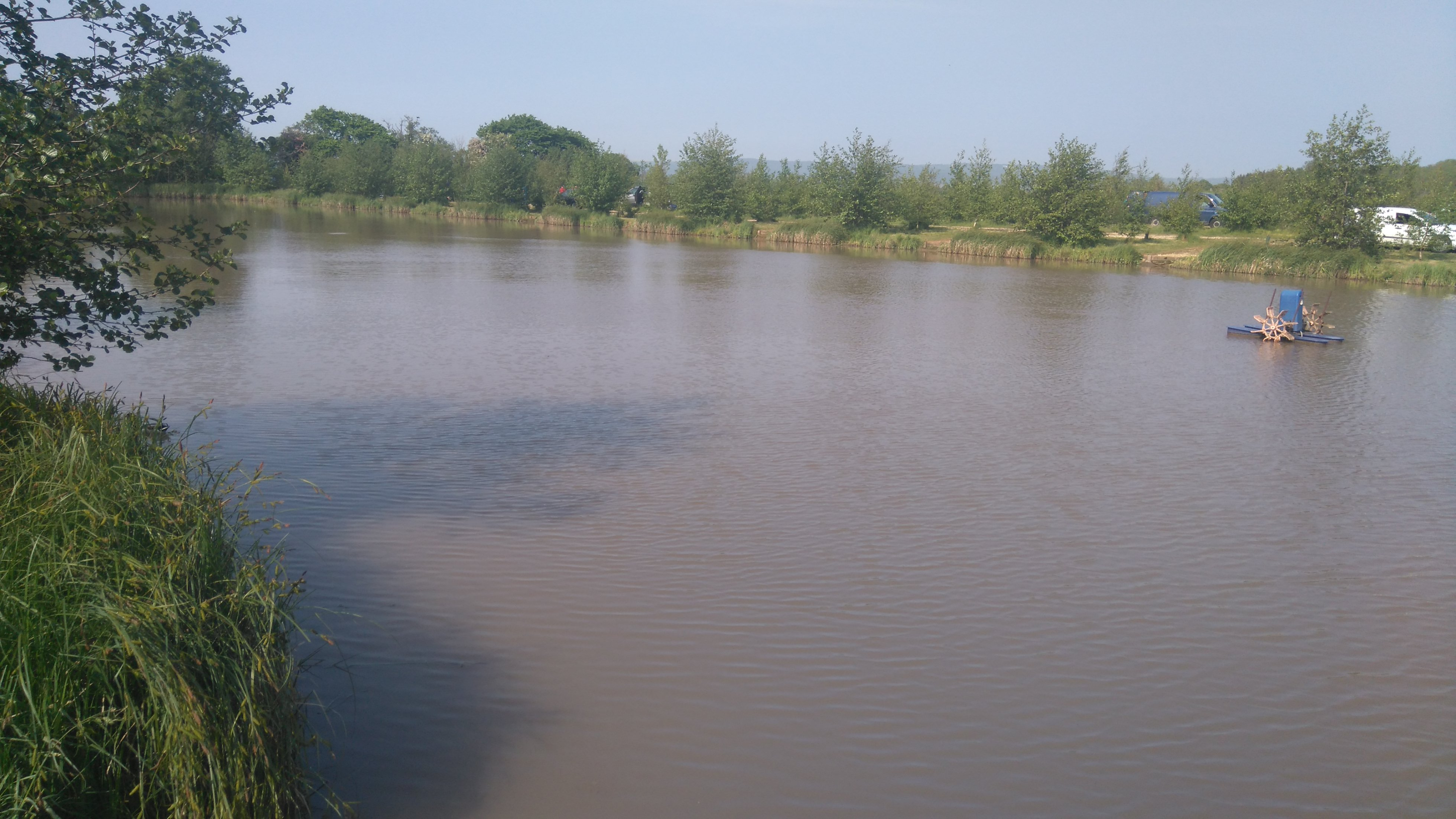 the oaks fishery sessay