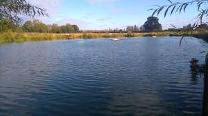 Weir pool